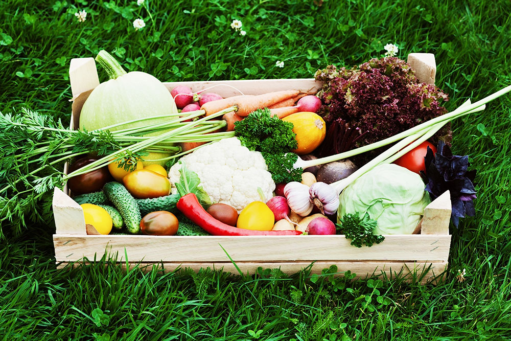 8 Reasons why you should join Russell Farms CSA